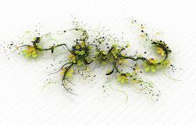 Весенняя посадка тюльпанов в грунт