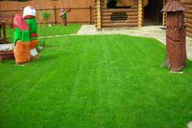 Оформление газона на дачном участке