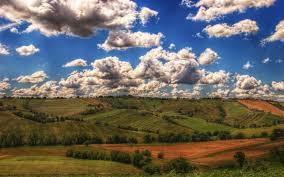 Как отрастить корни у орхидеи в воде