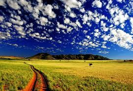 Открытие фермерского хозяйства с чего начать