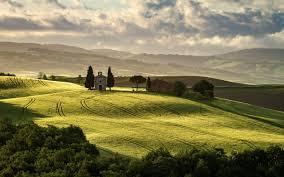 Пасхальник цветок как ухаживать