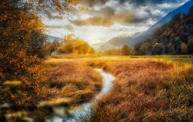 Куры теряют яйца что делать