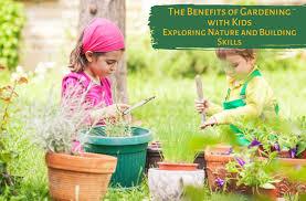 Опрыскивание деревьев соляркой пропорции