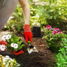 Садовые подставки для цветов из металла