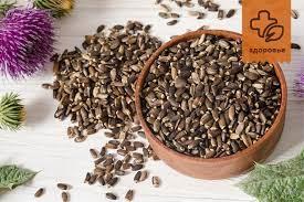 Как сделать дренаж для комнатных растений