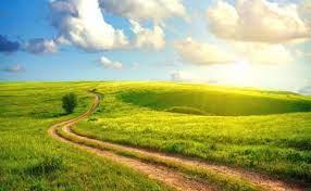 Вино перебродило что делать дальше